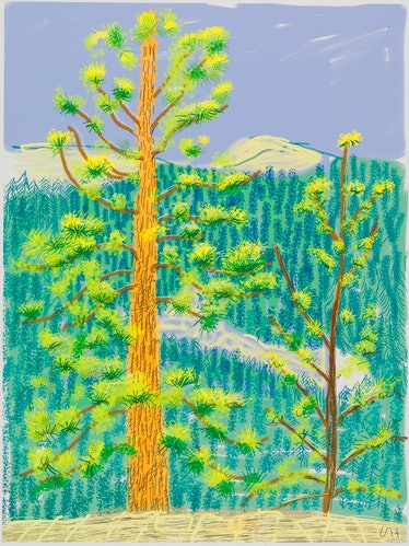 """""""Untitled No. 8"""" from """"The Yosemite Suite"""" 2010"""