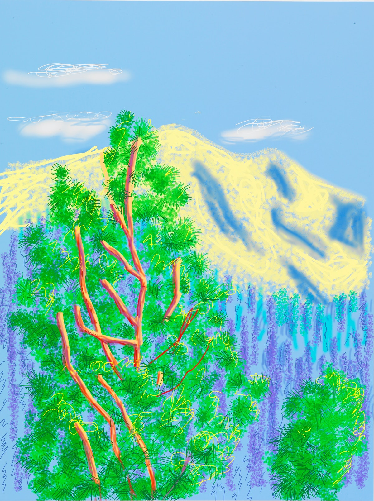 """""""Untitled No. 9"""" from """"The Yosemite Suite"""" 2010"""
