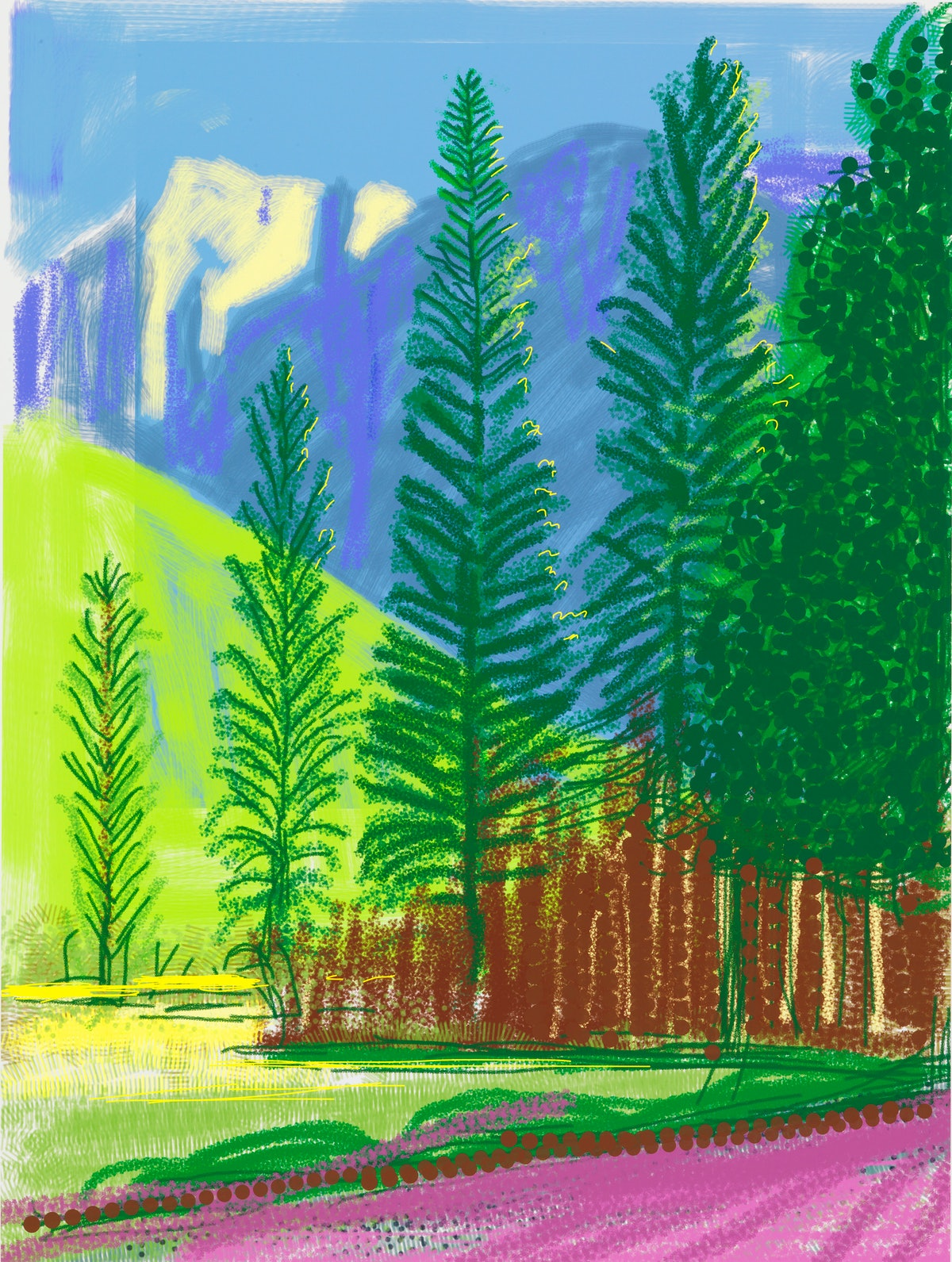 """""""Untitled No. 12"""" from """"The Yosemite Suite"""" 2010"""
