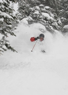 blog_snowbird_ski.jpg