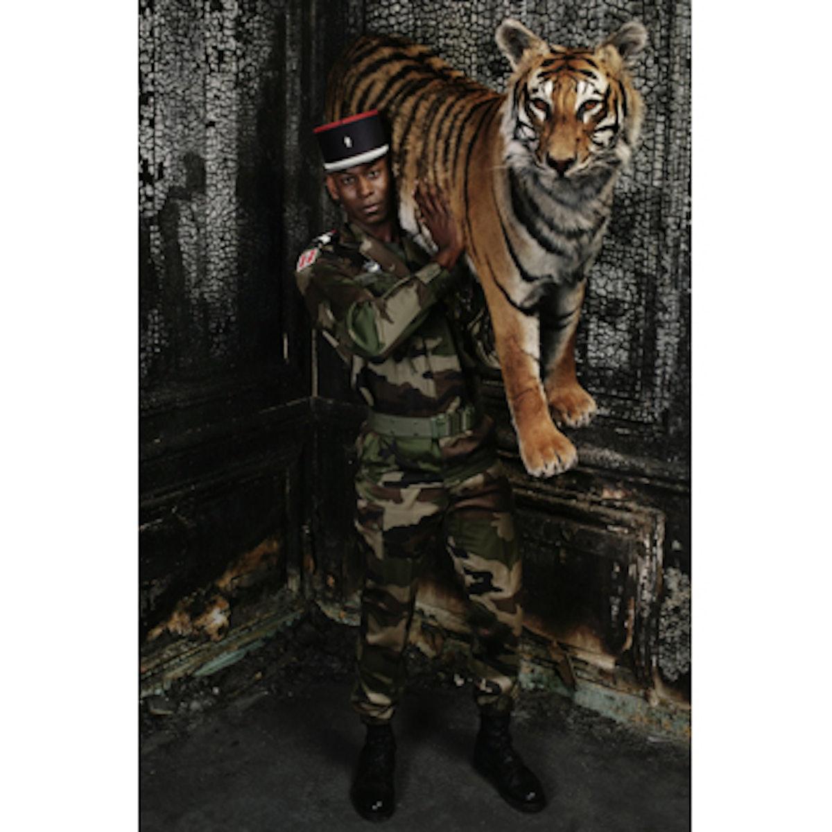 blog_deyrolles_tiger.jpg