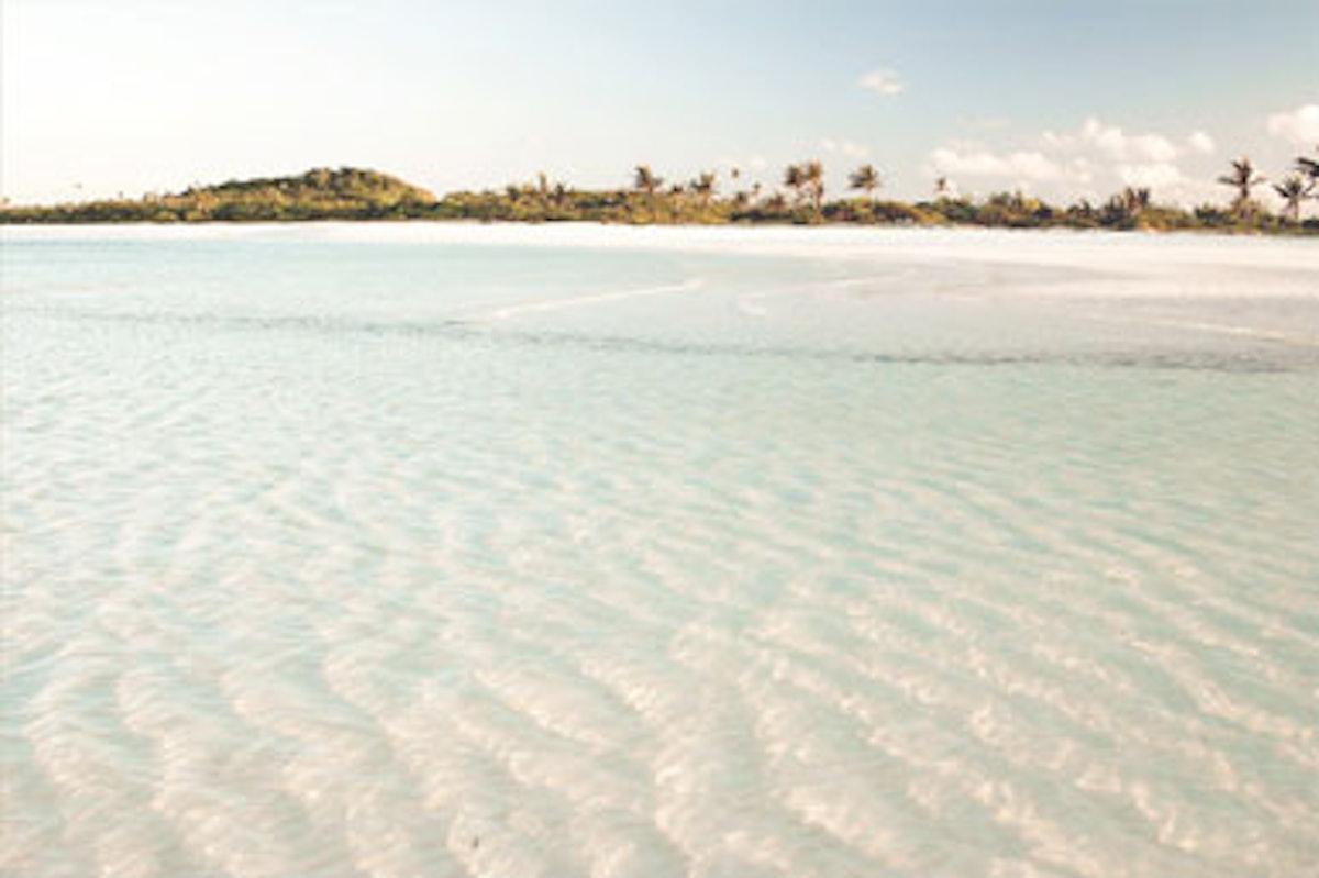 blog-beachtomato-02.jpg