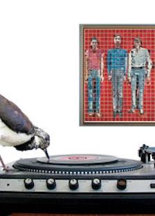 arar-vinyl-artwork-v.jpg