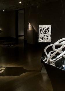blog-Elizabeth-Turk-exhibit-march2012-%28Cages%29hirschlandadler-%23722F.jpg
