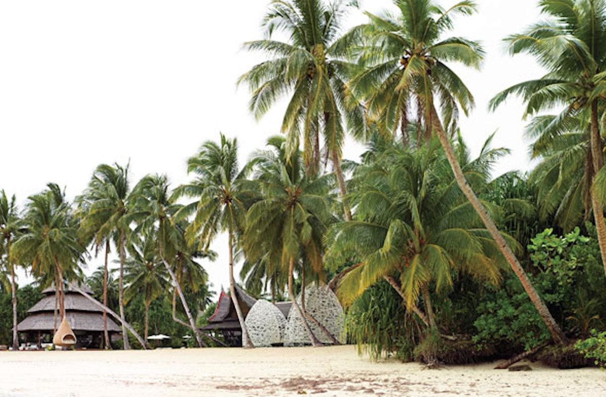 trar-dedon-island-philippines-01-h.jpg