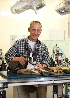 pear-dr-michael-farber-veterinarian.jpg