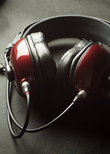 Alpha Dog Headphones