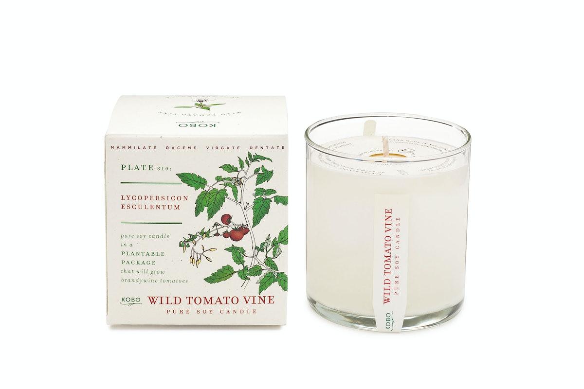 Kobo Plant the Box candle in Wild Tomato Vine