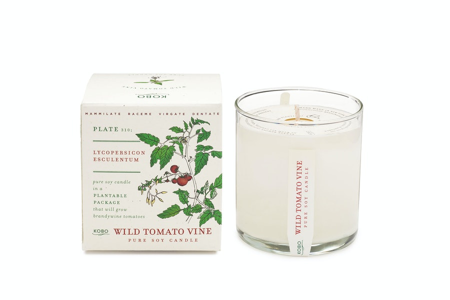 Kobo Plant the Box candle in Wild Tomato Vine