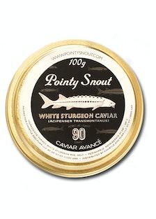 Pointy Snout Caviar Avancé 100g