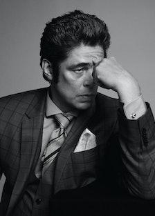 Benicio Del Toro, New Royals