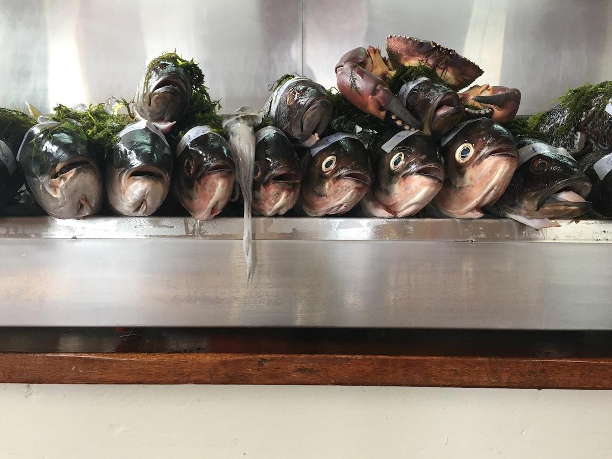 Amaz Restaurant