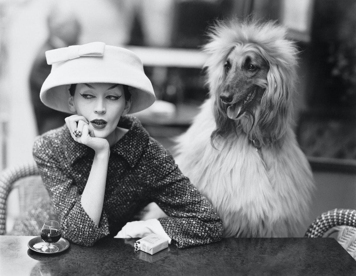 Dovima_with_Sacha_cloche_and_suit_by_Balenciaga_Cafe_des_Deux_Magots_Paris_1955._Photograph_by_Richa...