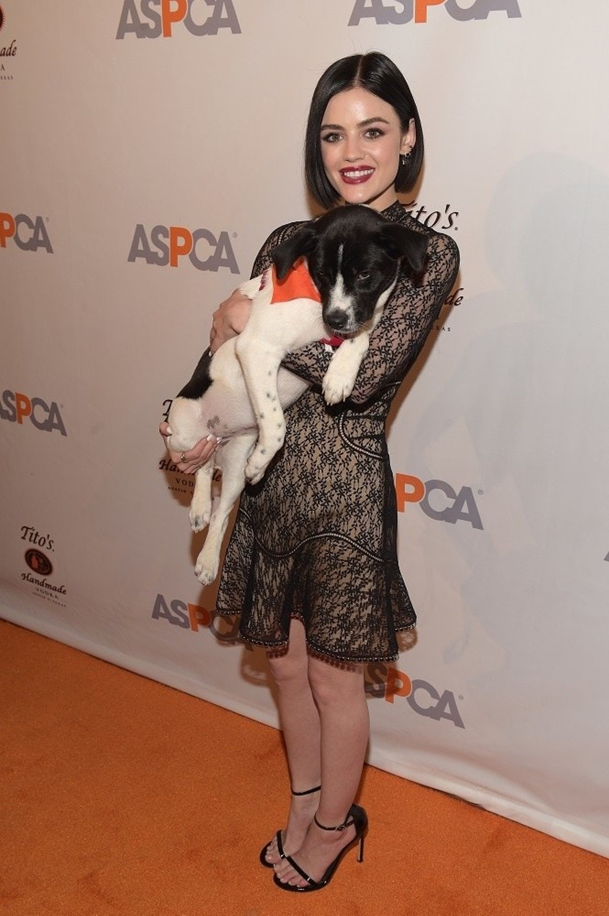 ASPCA After Dark Cocktail Party Hosted By Lucy Hale