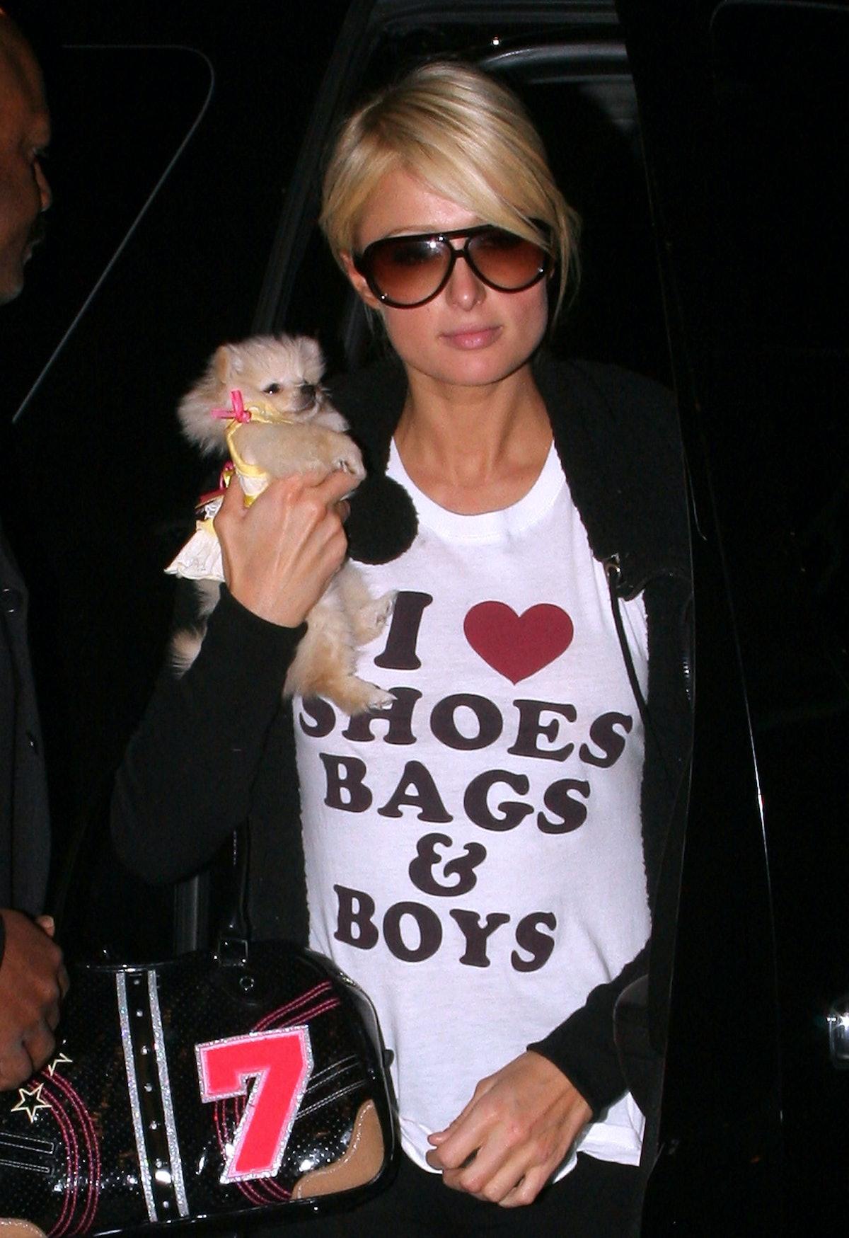 Paris holding a small dog