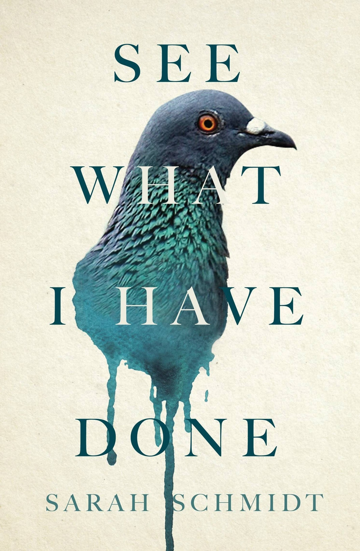 SEE WHAT I HAVE DONE by Sarah Schmidt.jpg