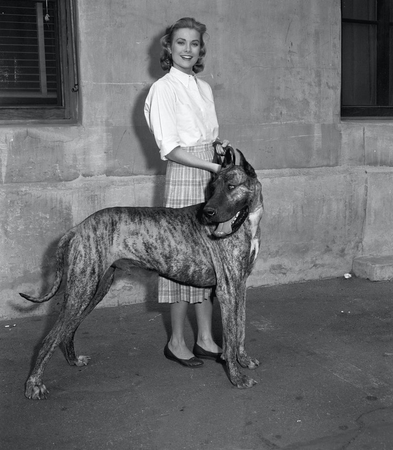Grace Kelly On Stroll With Great Dane