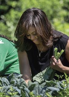 Chasing Light p.158-159--Harvesting kale in the White House Kitchen Garden.jpg