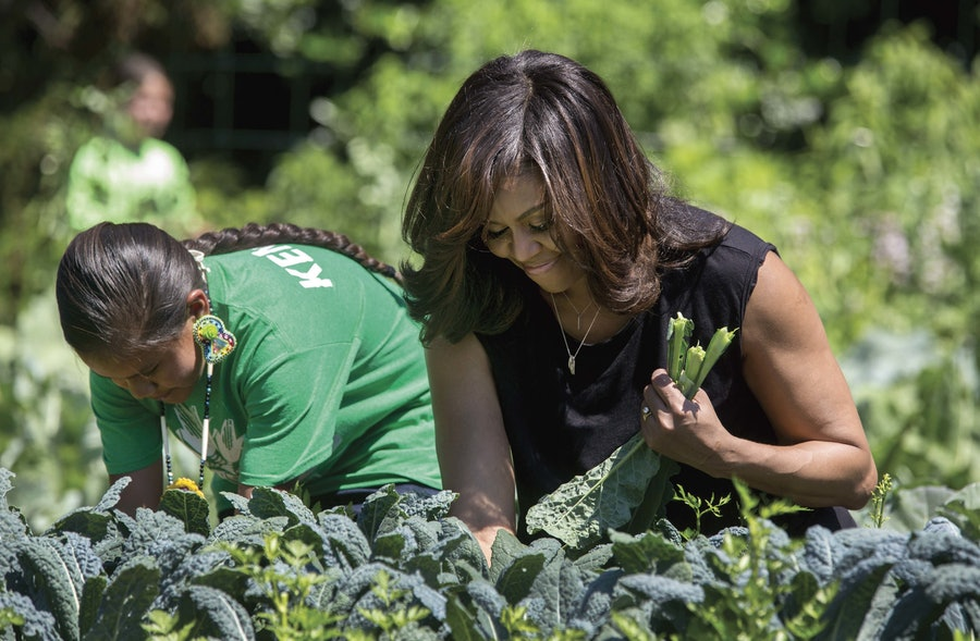 Chasing Light p.158-159--Harvesting kale in the White House Kitchen Garden.jpg