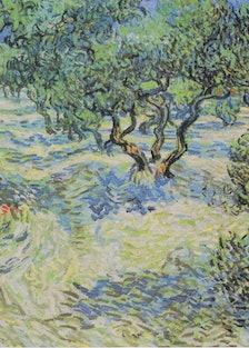 1024px-Van_Gogh_-_Olvivenhain.jpg