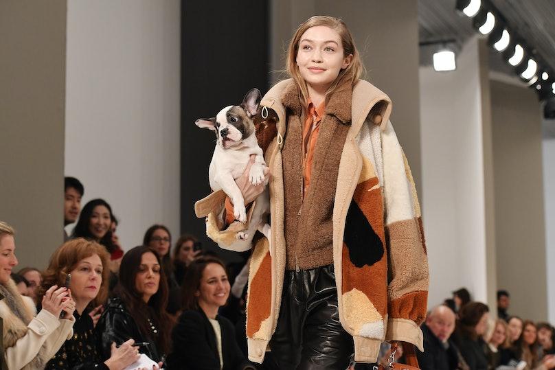 tod-milan-fashion-week-fw-2018-puppies-01.jpg