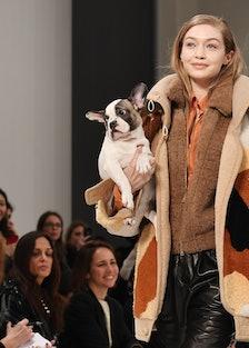 tod-milan-fashion-week-fw-2018-puppies-lead.jpg