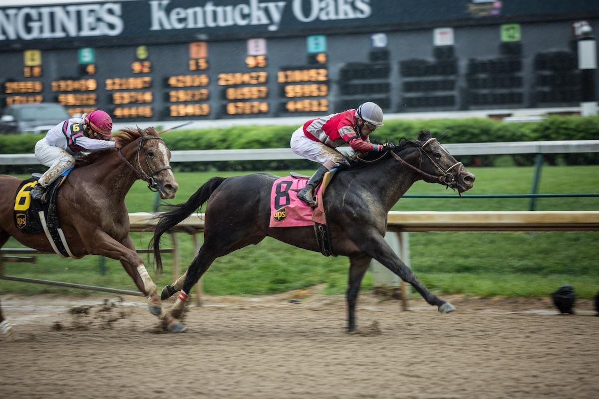 Bloodhorse_races (13 of 55).jpg