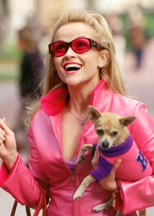 LEGALLY BLONDE, Reese Witherspoon, Bruiser, 2001, photo: (c) MGM/courtesy Everett Collection.