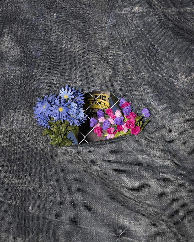 flowers(blue,purple,pink).jpg