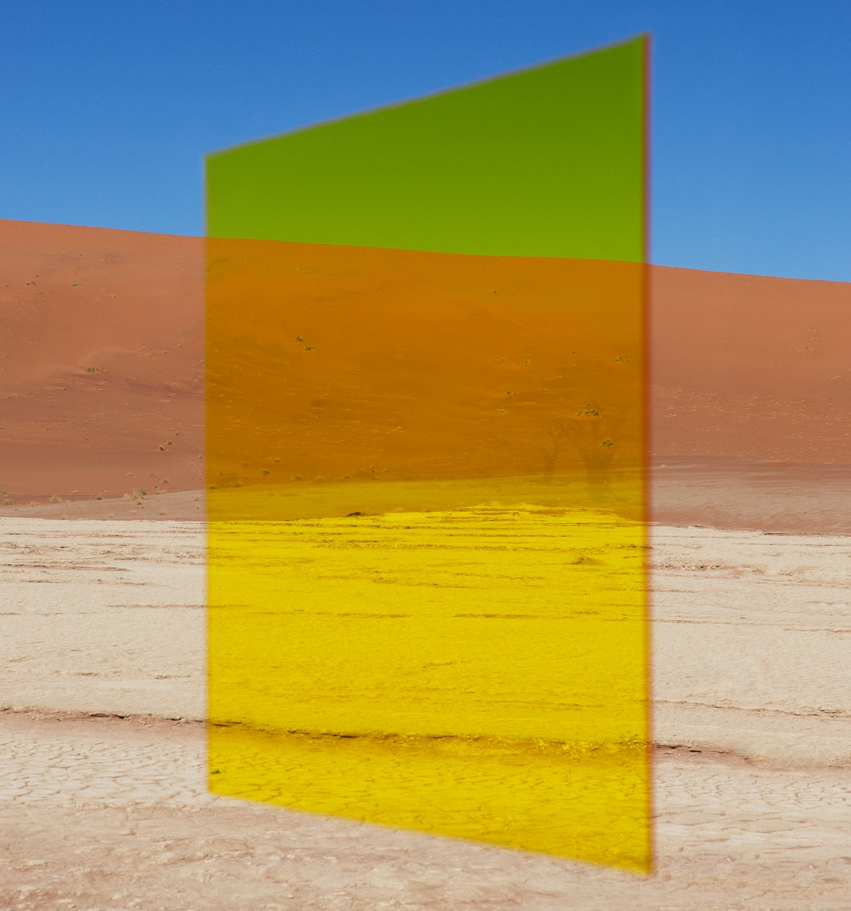 YellowVlei.jpg