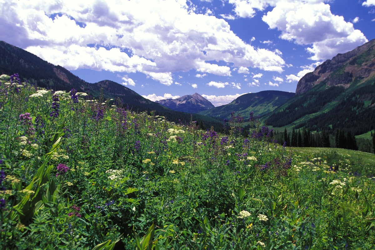 Colorado, West Maroon Pass, Crested Butte Side.