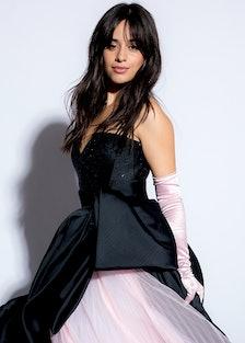 Camila Cabello's Emotional 'Consequences' Has A Surprise Star