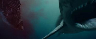 serenity-shark.jpg