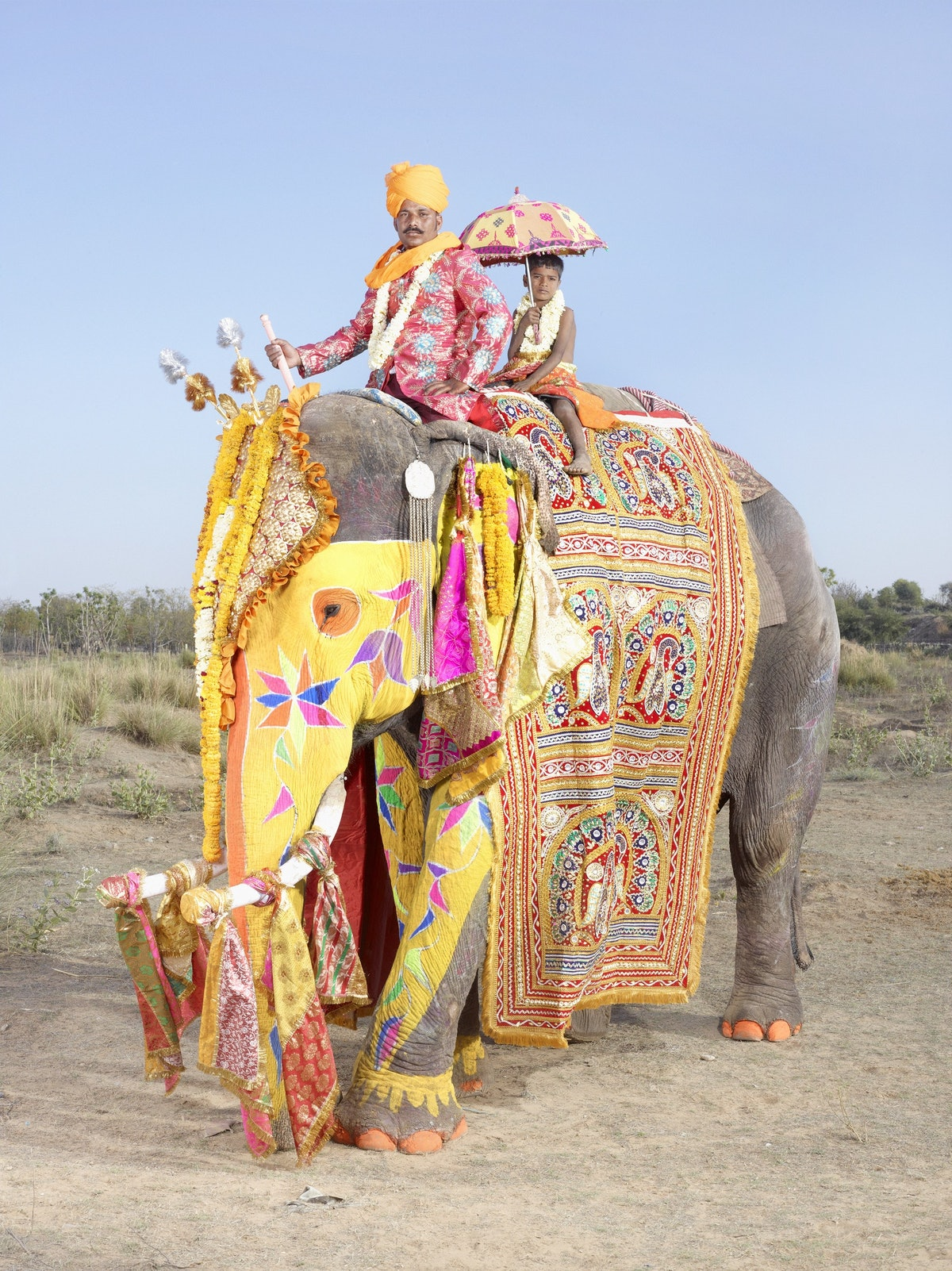 From the Painted elephants series, India, 2013 - Photo by Charles FrÇger.jpg