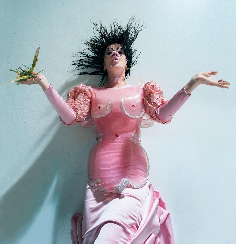 Björk wears a Sinéad O'Dwyer bustier; David Ferreira dress; Damselfrau earrings.