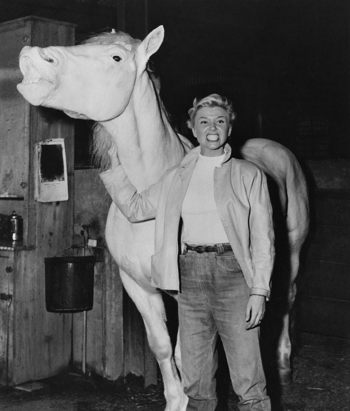 Doris Day And Silver