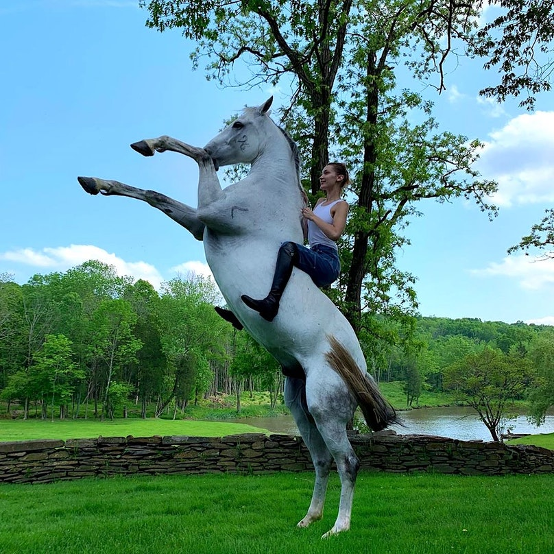 bella-hadid-horse.jpg