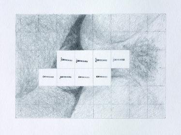 2008_Censored Grid #7_17 x 14 ins.jpg