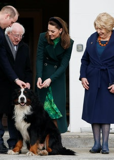 Prince WIlliam and Kate meet a dog.