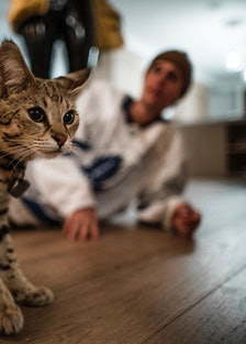 Justin Bieber and his cat, Sushi.
