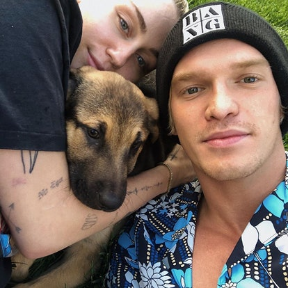 Miley Cyrus, Cody Simpson, and their new dog Bo
