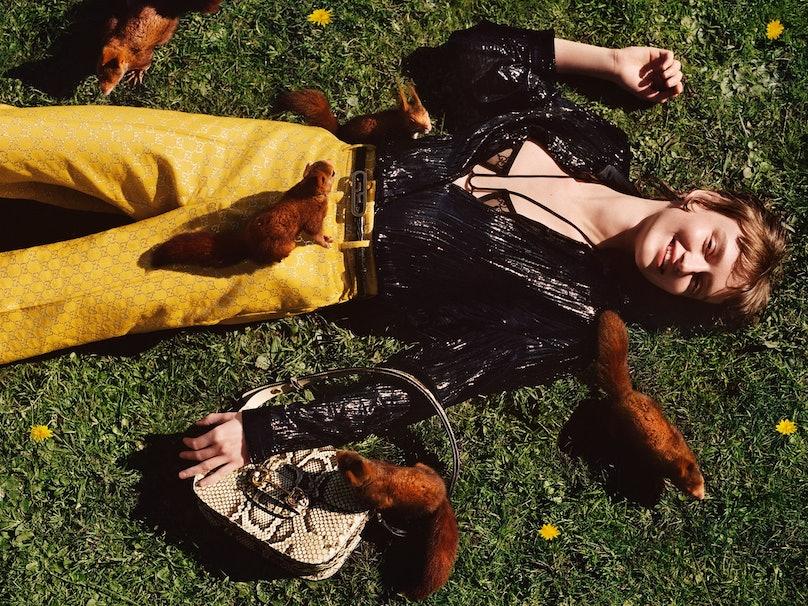 Animals in a Gucci campaign