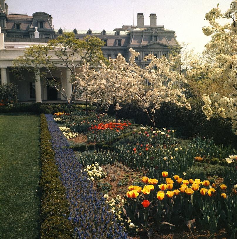 White House Rose Garden in 1963