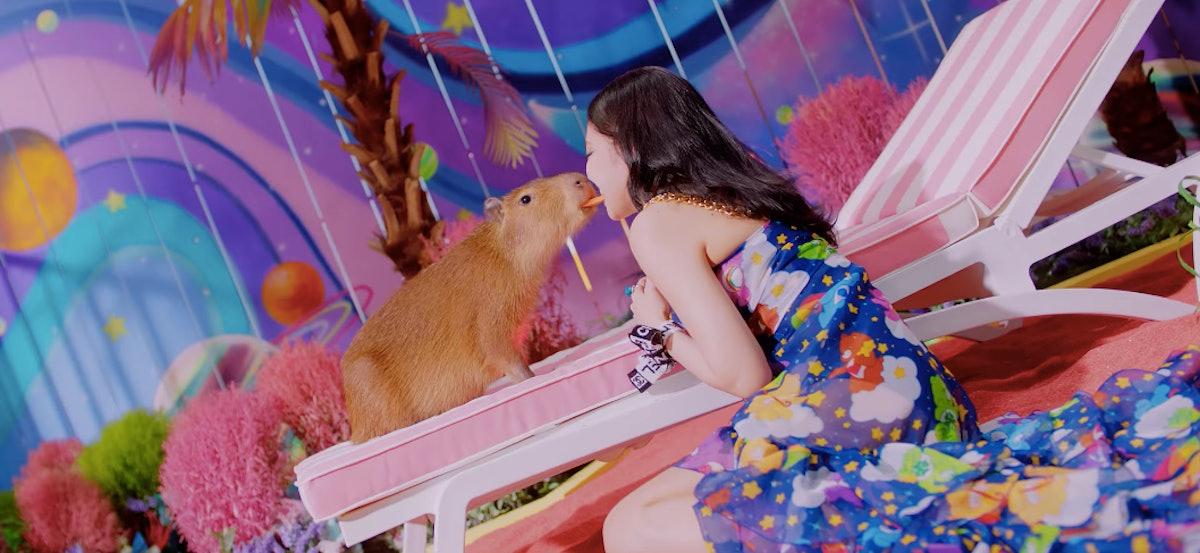 capybara sharing food