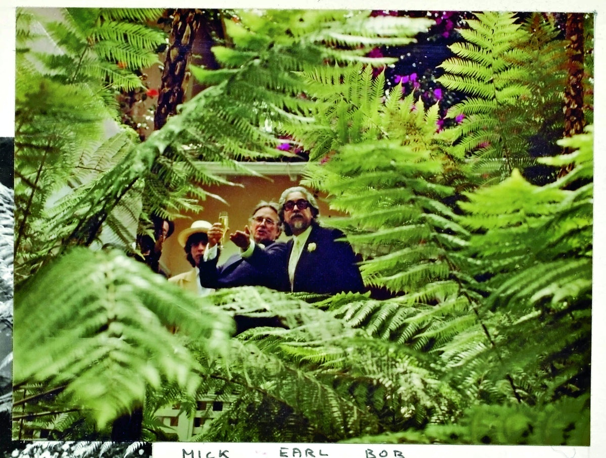 Ferns obscuring Mick Jagger