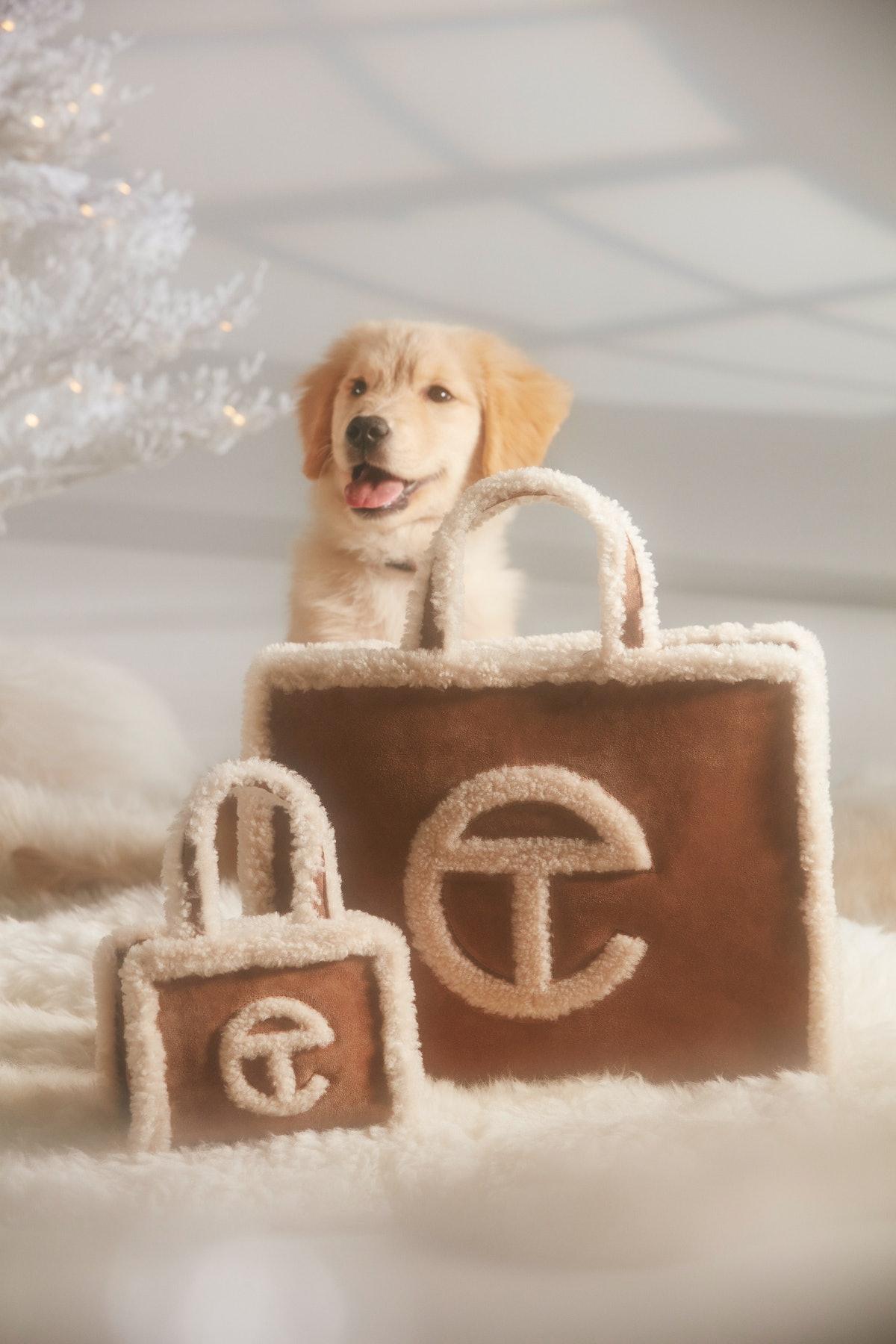 An adorable dog with two Telfar x Ugg bags