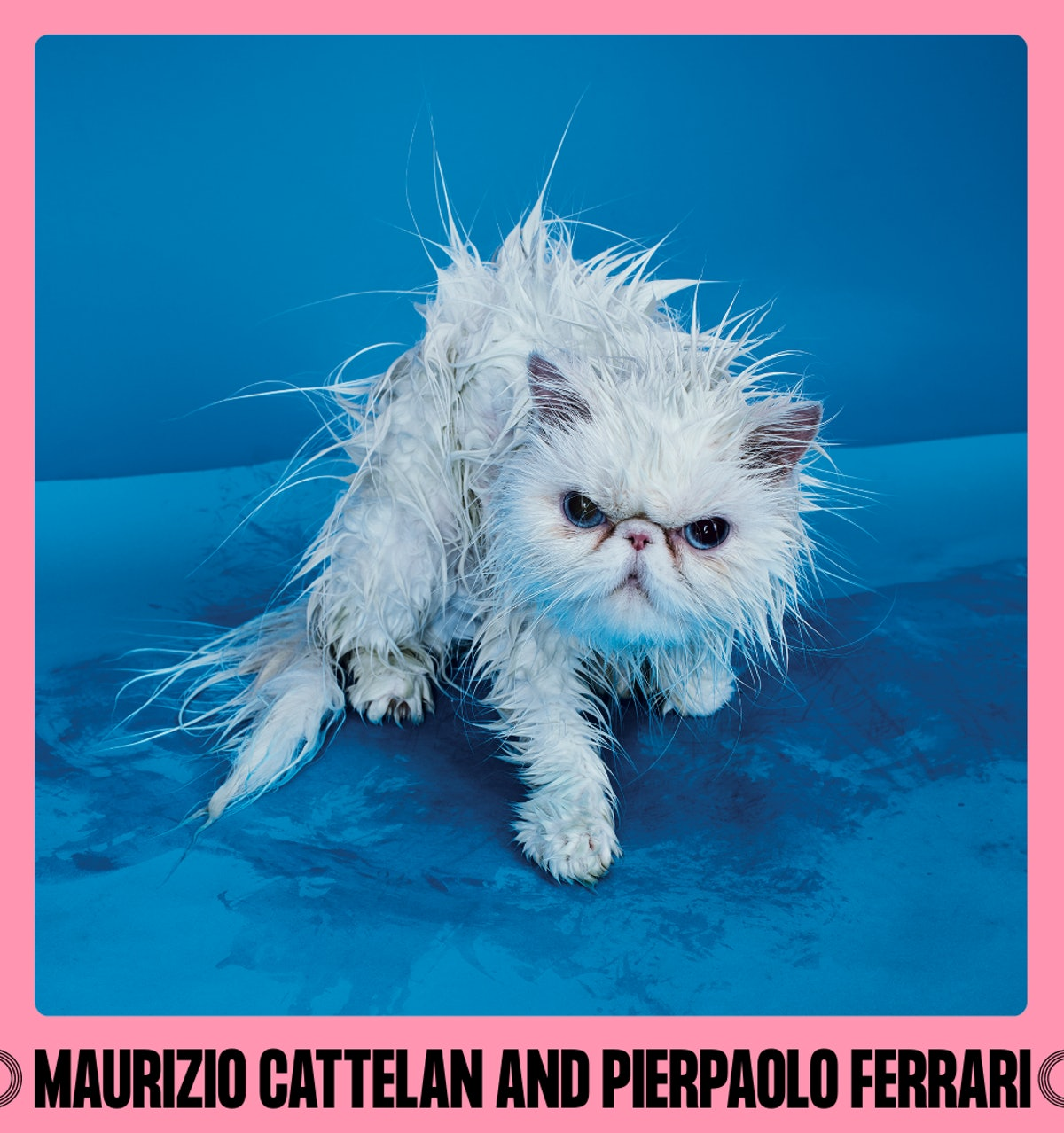 MAURIZIO CATTELAN AND PIERPAOLO FERRARI Card for Double Dutch