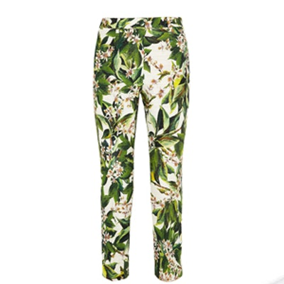 Floral Print Cotton Straight Leg Pants