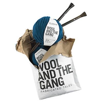 Knitting Beginner Kit