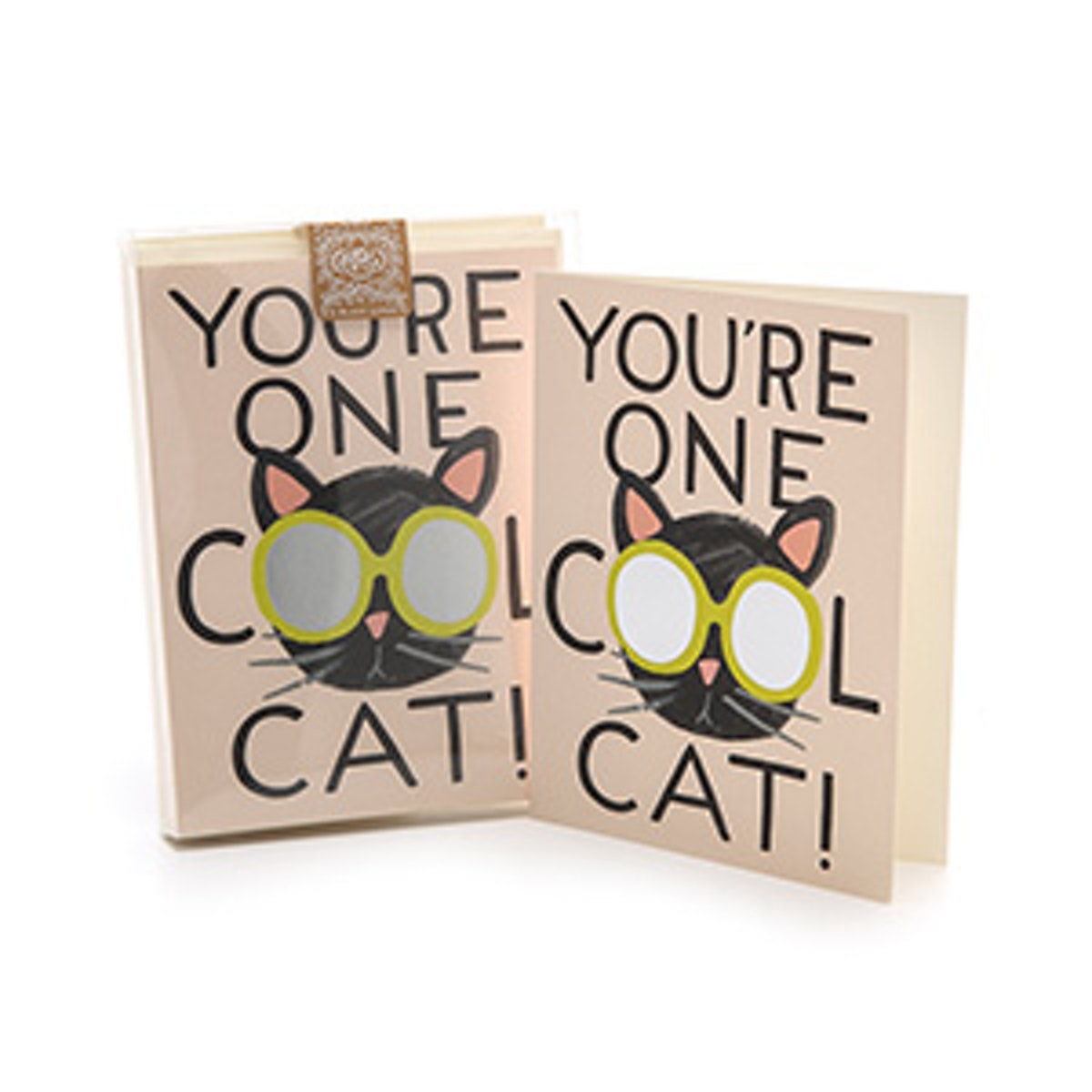 Cool Cat Boxed Card Set